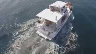 Pacific Yacht Charters Costa Rica, Tours, Sport Fishing & Boat Rental