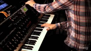 "MUTEMATH - ""BLOOD PRESSURE"" (MOOG SOUND LAB)"