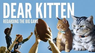 Dear Kitten: Regarding The Big Game
