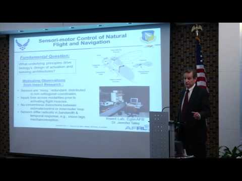 Dr. Willard Larkin - Sensory Information Systems