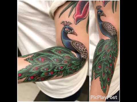Peacock Tattoo Sleeve Start Youtube