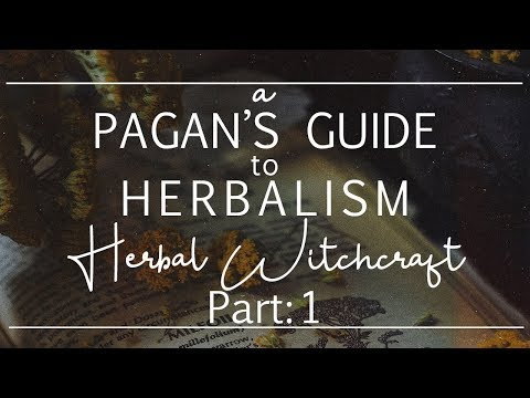 A Pagan's Guide to Herbalism II Herbal Witchcraft Part 1, How They're Used + Book Recommends!