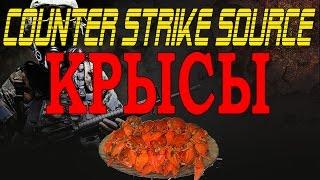 Прикольные и смешные моменты в Counter Strike Source НАШЕСТВИЕ КРЫС!!!