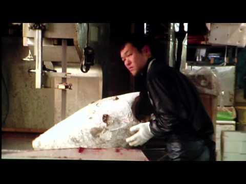 "Sixpack France presents ""It Was On Earth That I Knew Joy"", a movie by Jean-Baptiste de Laubier"
