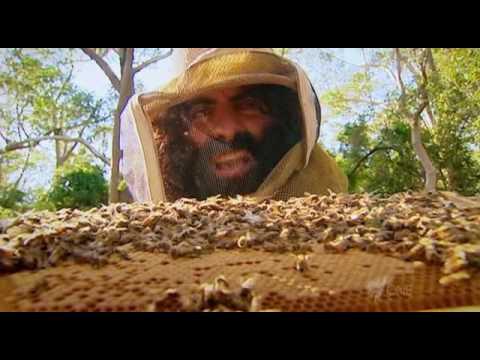 Costa's Garden Odyssey S01 Part 7