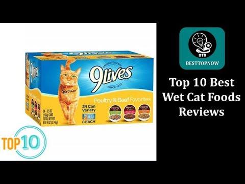 Top 10 Best Wet Cat Foods Reviews [BestTopNow Rev]