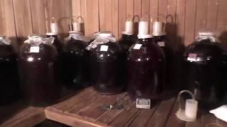 Урожай 2016г. Домашнее виноградное вино . Часть 1. Просто. Вкусно. Наглядно.