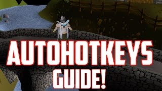 """How to use AHK on """"Oldschool Runescape 2007"""" 