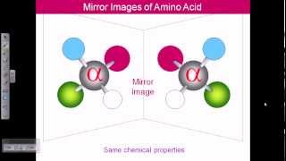 Amino acid structures (part 1)
