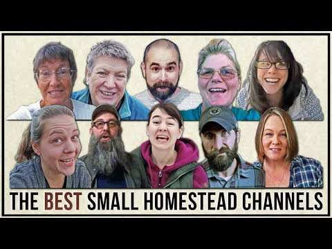 The BEST SMALL HOMESTEAD CHANNELS | Top 10 Tuesdays