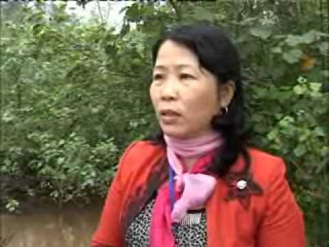 Dai phat thanh truyen hinh Quang Tri