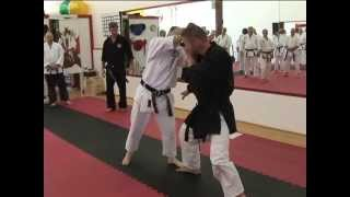 Troy J Price Martial Arts Action Clips Shurite Conference 2012