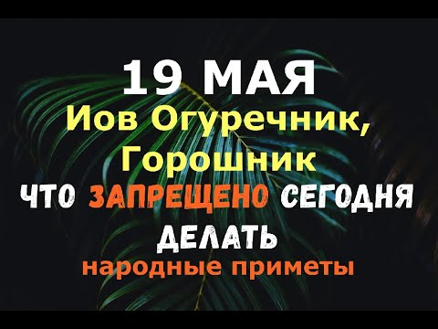 19 мая. Иов Горошник/Иов Огуречник. ЧТО ЗАПРЕЩЕНО СЕГОДНЯ ДЕЛАТЬ/Народные приметы