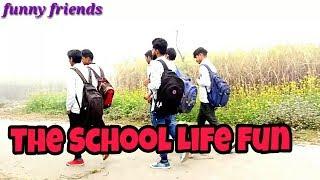 The School Life fun