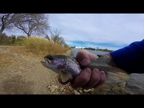 Catching Trout At Prospect Lake Colorado Springs.