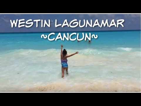 DOLPHINS & Dancing~ Beach- Who inspires you~ FUN kids Cancun Mexico Travel Vlog Part 4