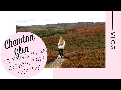 We stay in the most INSANE TREE HOUSE!   Chewton Glen   The New Forest   Katie KALANCHOE