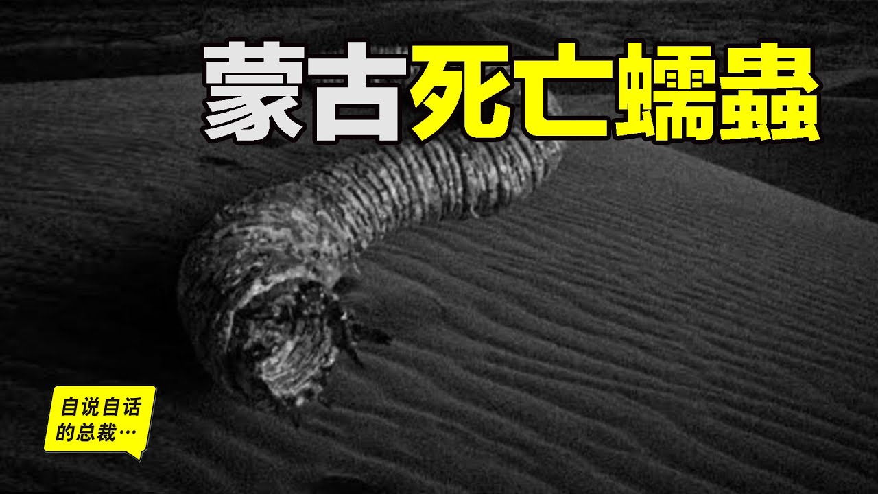 蒙古死亡蠕蟲:找到它就能找到成吉思汗的寶藏…… 自說自話的總裁