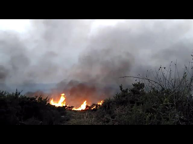 Incendio en Agolada
