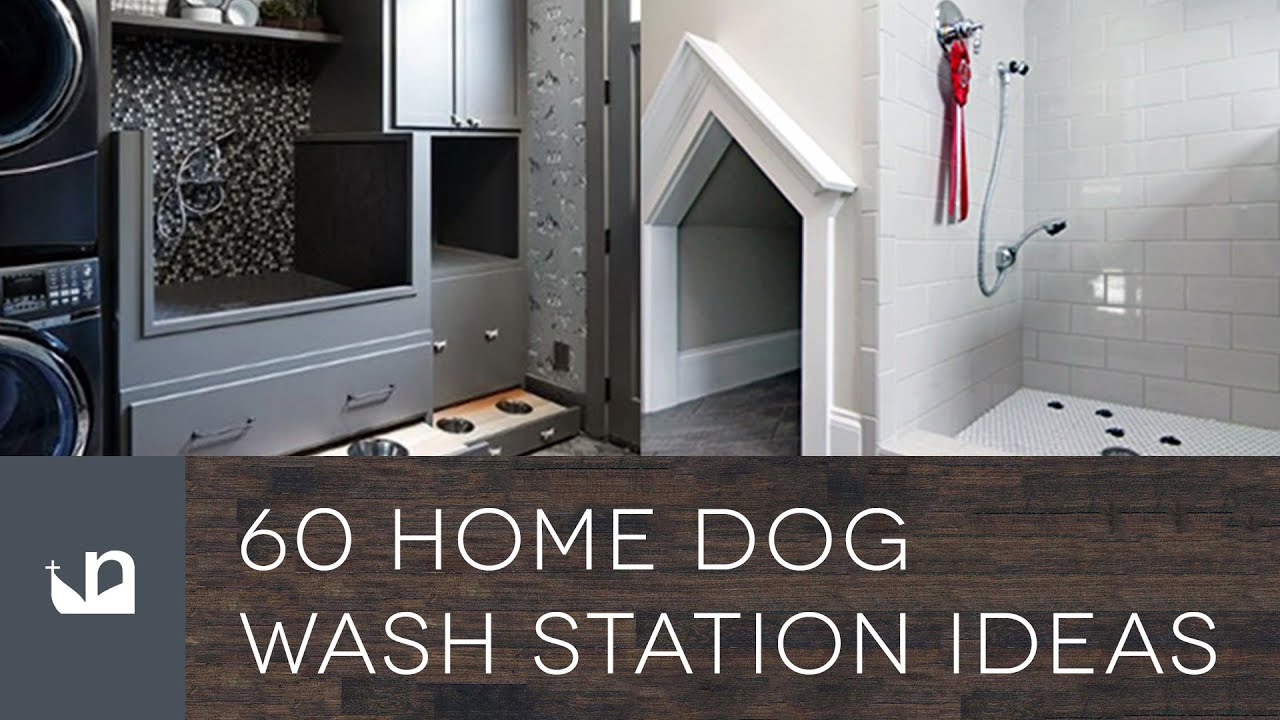 dog washing station for home