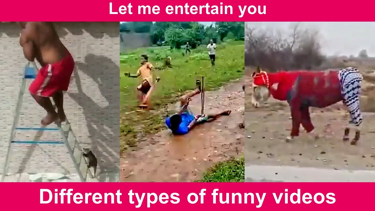 #315 Different types of funny videos | FUNNY VIDEOS | Let Me Entertain You