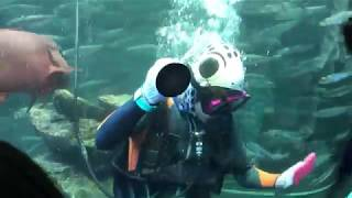 サンシャイン水族館 神対応