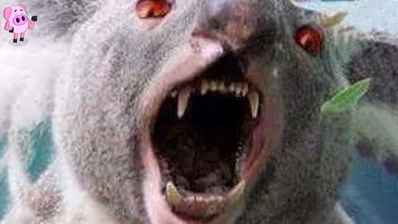 australia-s-scariest-urban-legends-that-may-actually-be-true