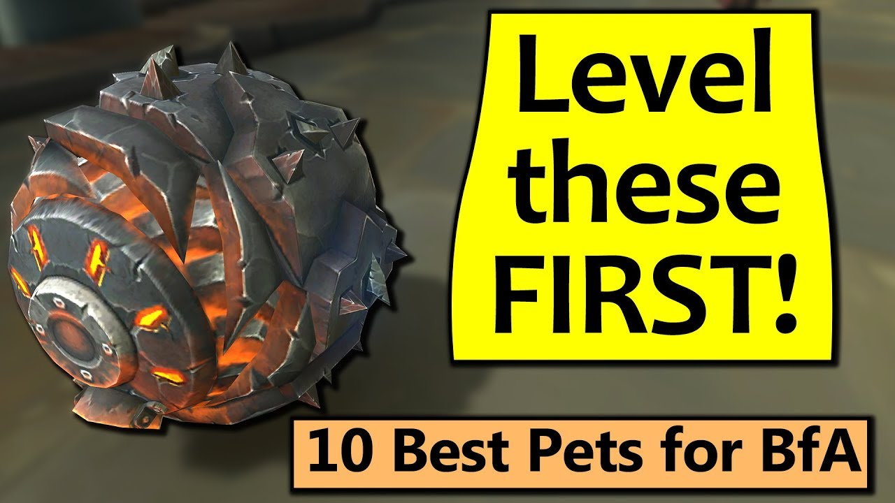 Best Battle Pets Wow 2019 Level These First! 10 Best Battle Pets in BfA   YouTube