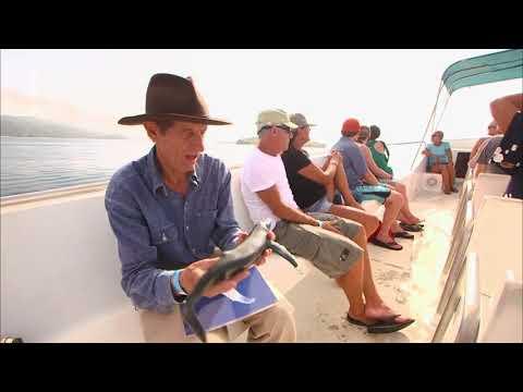 America mit David Yetman: Dominikanische Republik