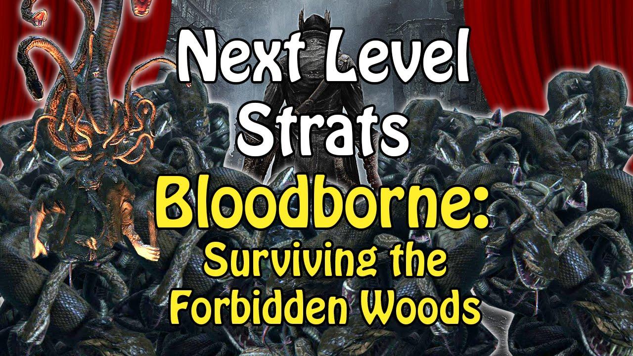 how to get to forbidden woods