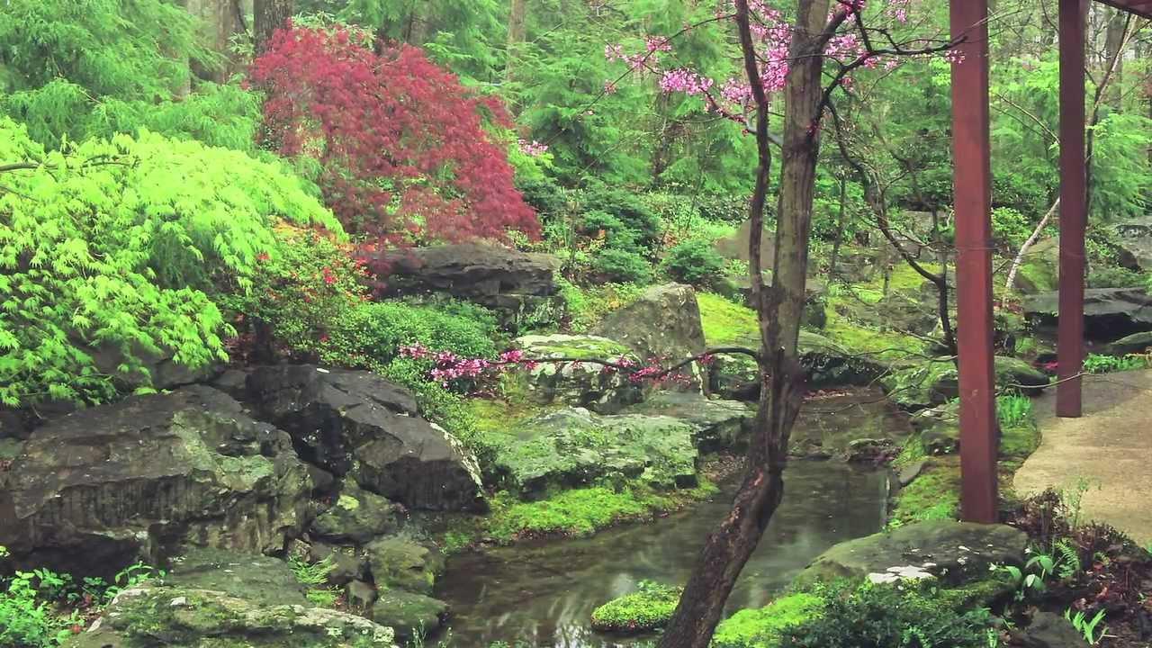 Evoking Native Landscape Using Japanese Garden Principles   YouTube
