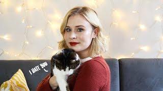 Adopting my senior cat  | UPDATE | Lex Croucher