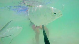 RIU Tequila 2015 - Fishing at RIU Yucatan beach (GoPro Hero 4S)