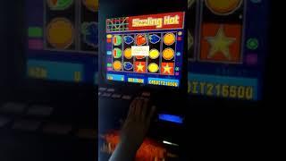 Jocuri de noroc bacau iva