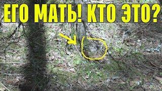 КОГО Я НАШЕЛ? ЛУНЬ? Коп в лесу и поиск монет у заброшки
