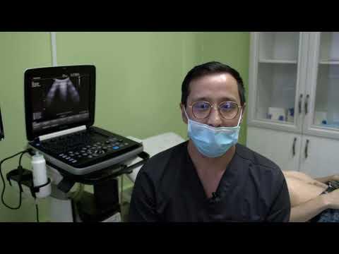 Ультразвуковое исследование легких при пневмонии - практическая часть