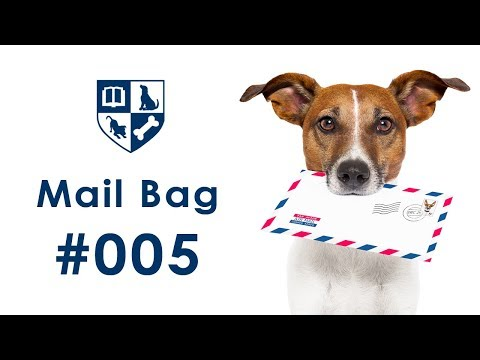 Dunbar Mailbag #5 - Stop Jumping/How to Greet People