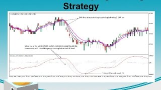 5-8-13 Forex Scalping Trading Strategy