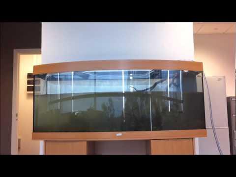 juwel vision 450 filling up time lapse youtube. Black Bedroom Furniture Sets. Home Design Ideas
