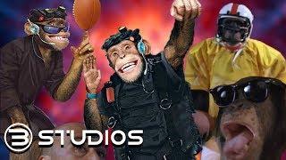 The Funky Monkey Cinematic Universe #FunkyMonkey #WarnerBros | B Studios