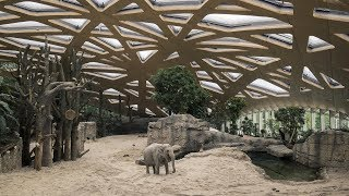 Here is a list of some the most ambitious zoo exhibits!zoos included:yorkshire wildlife parkhenry doorly zoozurich zooaustralia zoobronx zoomusic credit: ...