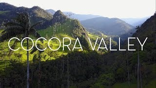 BEAUTIFUL COCORA VALLEY COLOMBIA - DJI MAVIC PRO - HIGHEST PALM TREES IN THE WORLD!
