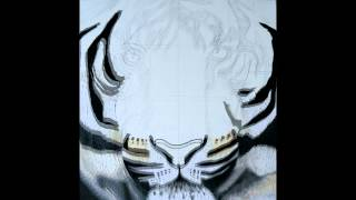 "Gambar cover Crystal Davis Paper Mosaic. The Making of ""Wild Spirit"" the Tiger."