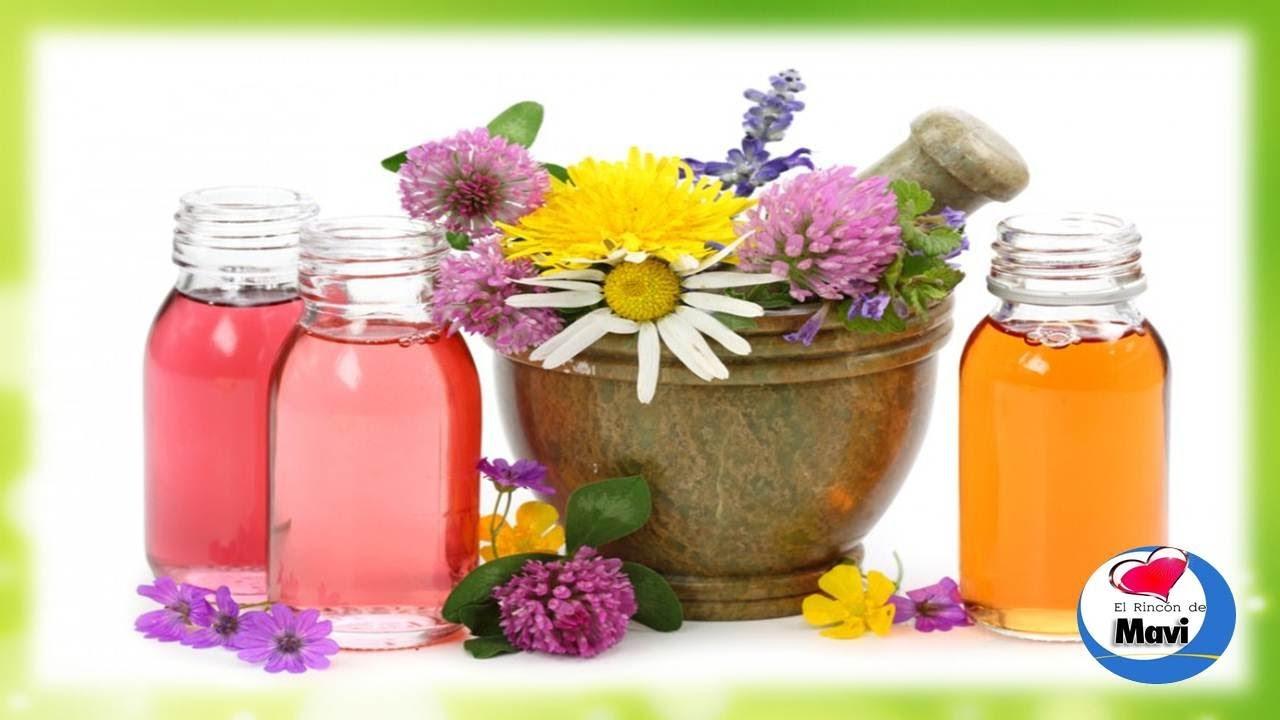 Como hacer aceites esenciales caseros aceite esencial for Como se planta la lavanda