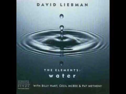 DAVID LIEBMAN - Water