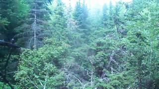 Sinkhole at White Rock Recreation Area, Hillsborough, NB