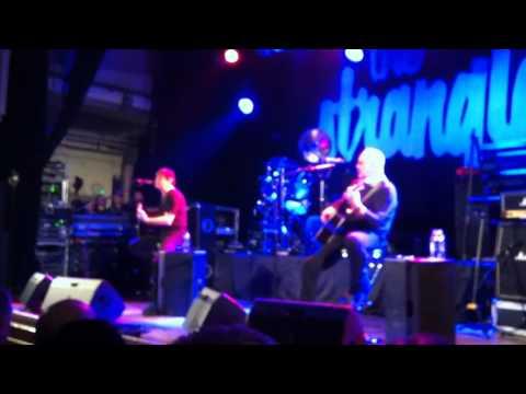 The Stranglers Convention 2011 - Quark Strangeness & Charm
