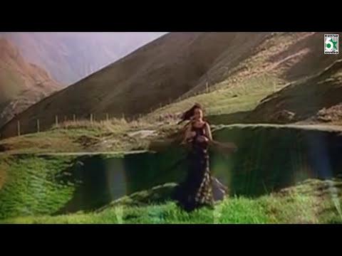 Friends Tamil Movie | Vaanam Perisuthan Song | Vijay | Surya | Ilayaraja