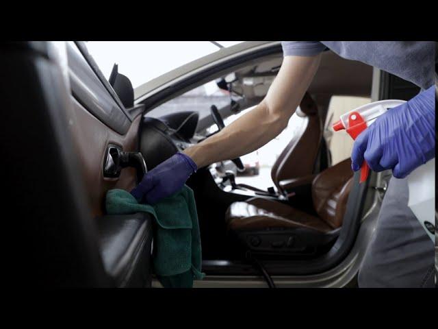 Eliminación de moho en el interior del coche.