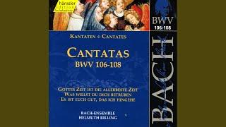 """Gottes Zeit ist die allerbeste Zeit, BWV 106 """"Actus tragicus"""": Sonatina"""
